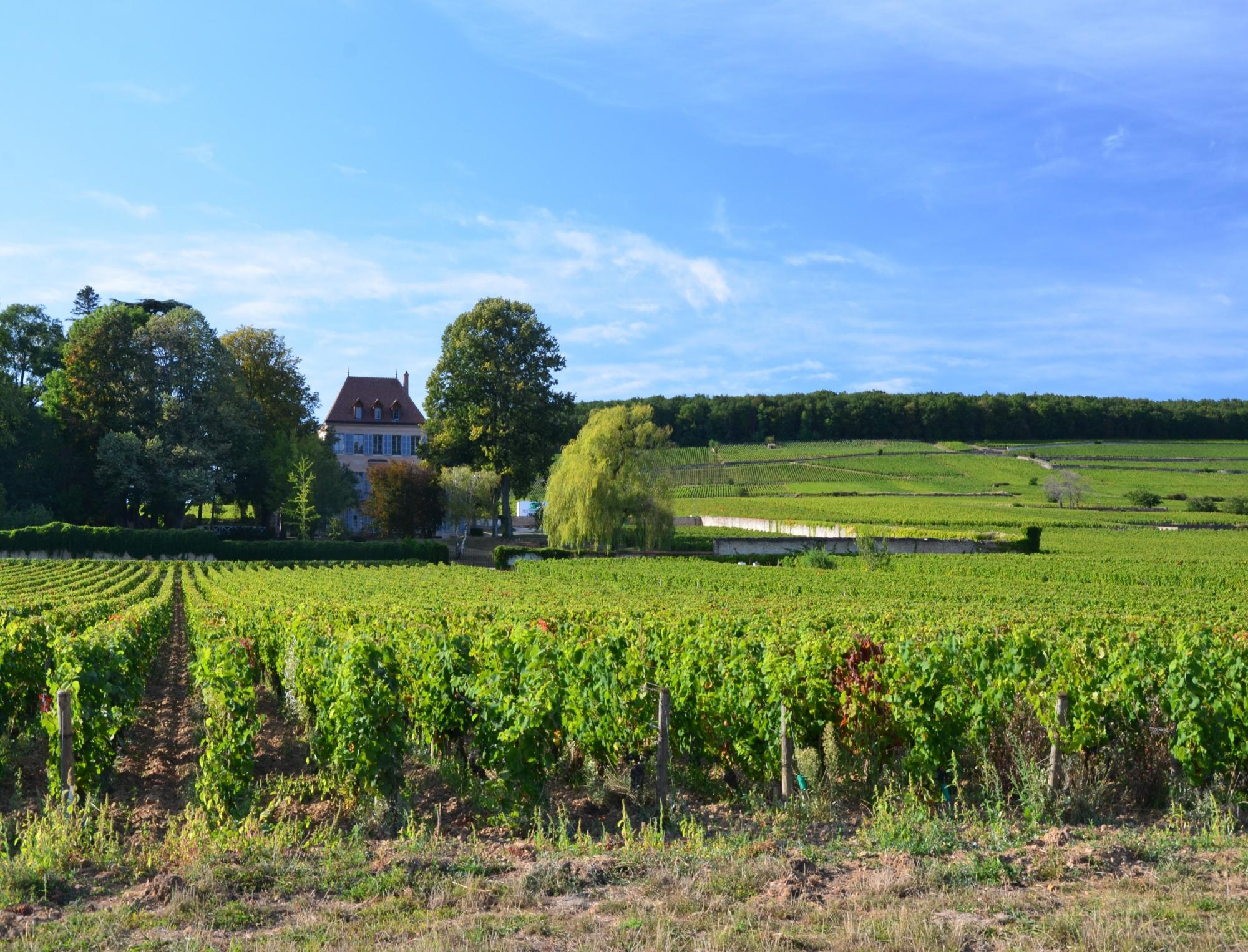 Discover Burgundy - Vacation package : France Coast to Coast  - Land of France, travel agency in France